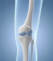 bone-health