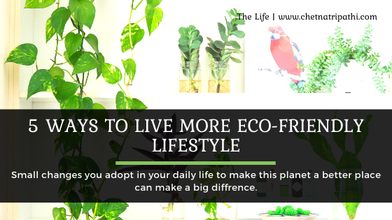 How to live a more Eco friendly lifestyle